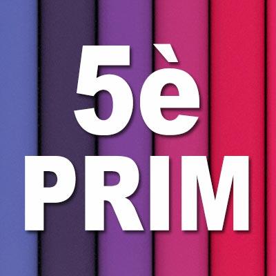 quadrat-llibres-5prim